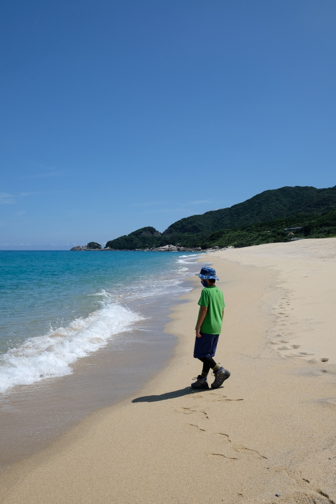 屋久島いなか浜ウミガメの産卵地