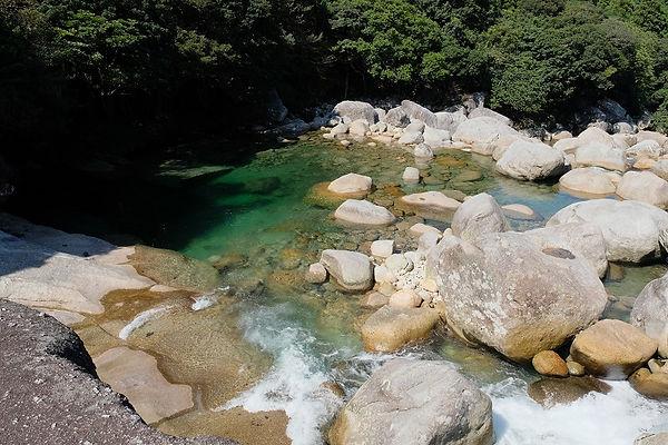 屋久島横河渓谷2.jpg