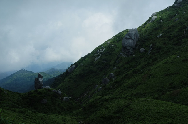 屋久島登山ツアー中の風景