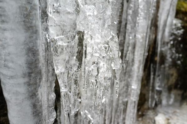屋久島の氷柱
