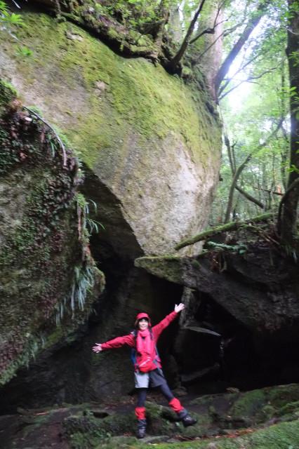 屋久島白谷雲水峡の大岩とエコツアー