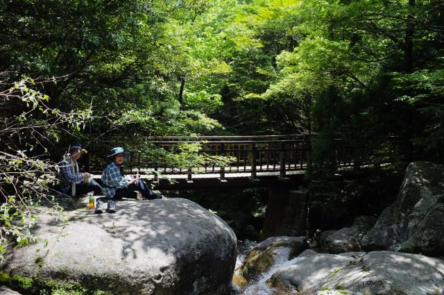 屋久島の河原にてお昼ごはん