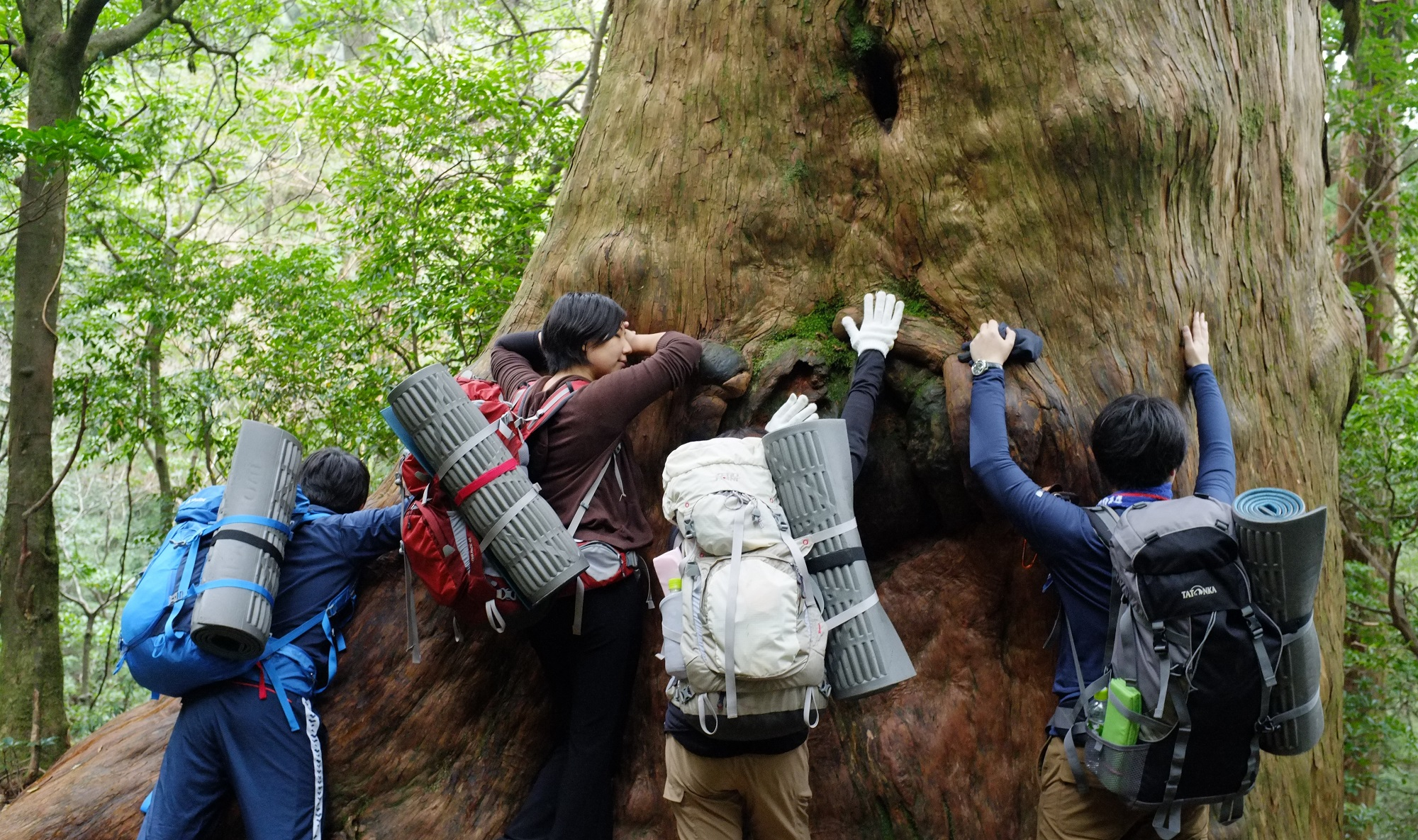 学生旅行3