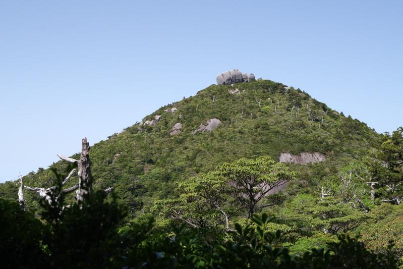 屋久島高盤岳のトーフ岩