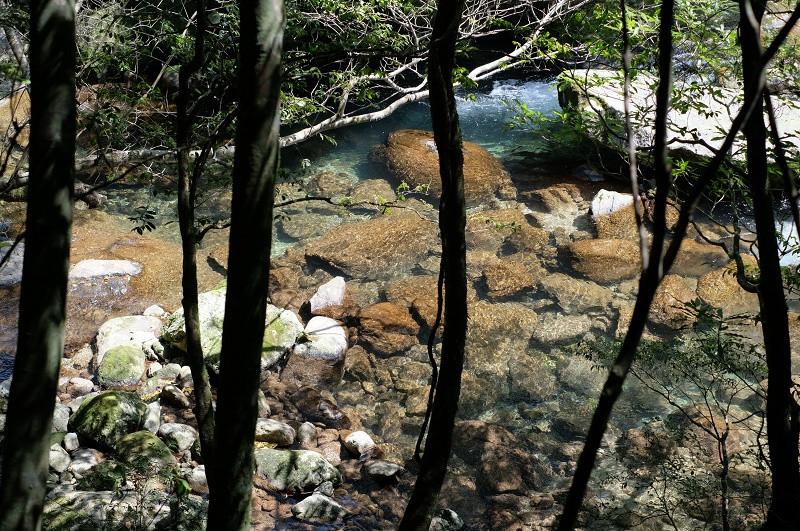 屋久島の清流・白谷川
