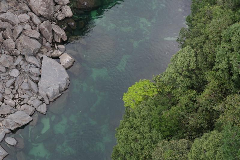 屋久島安房川でカヤックツアーはいかが