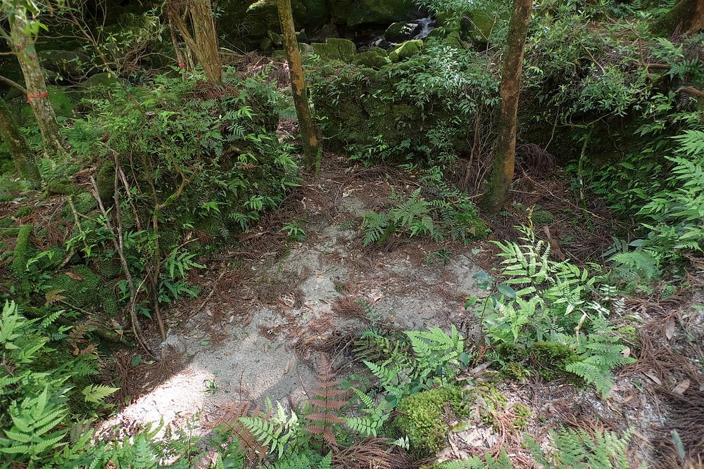 屋久島炭焼き窯の跡