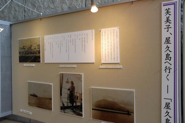 屋久島環境文化村センター展示ホール