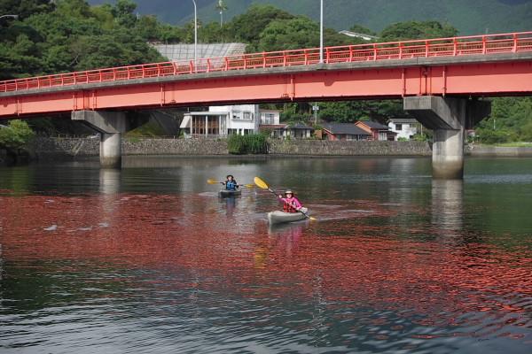 屋久島安房川でカヌー