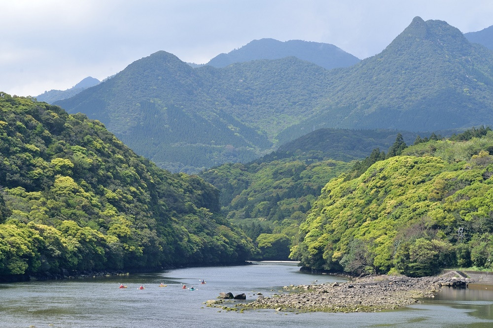 新緑に包まれながらの屋久島カヌーツアー