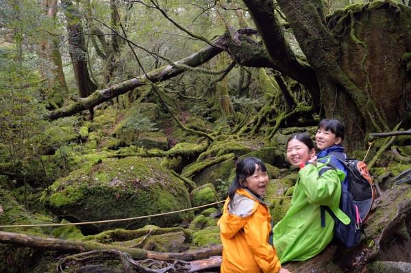 屋久島苔むす森にて写真
