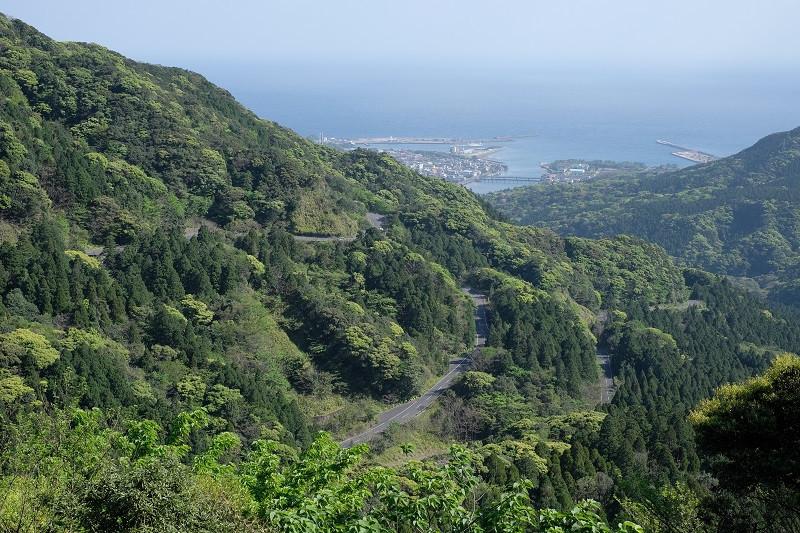 屋久島白谷雲水峡につながるワインディングロード