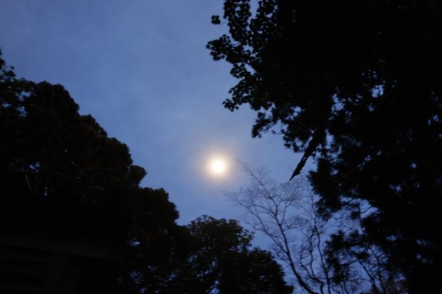 縄文杉キャンプで月見