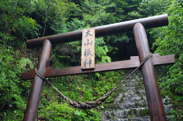 屋久島の小杉谷の神社