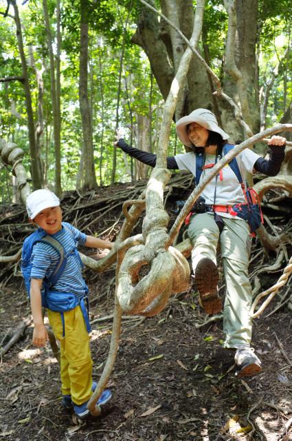 屋久島世界遺産の森で自然あそび