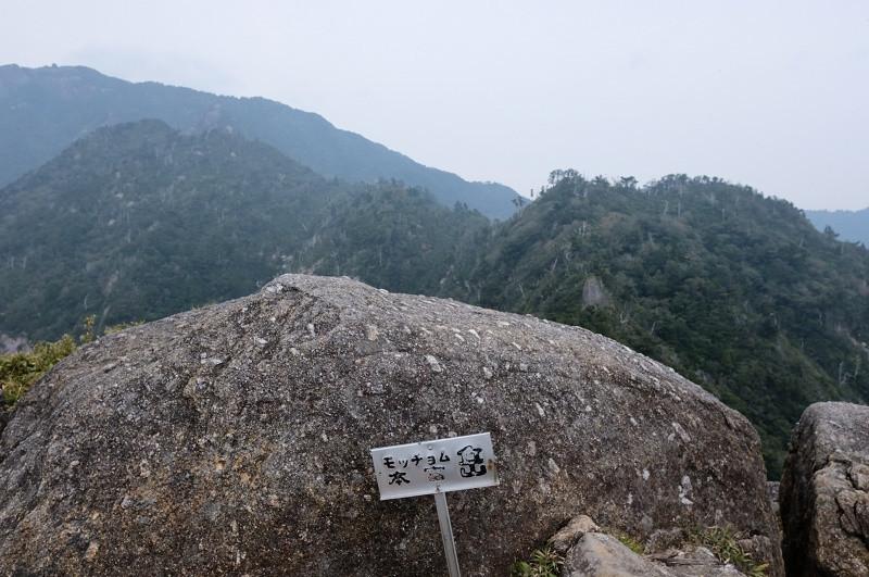 屋久島モッチョム岳山頂