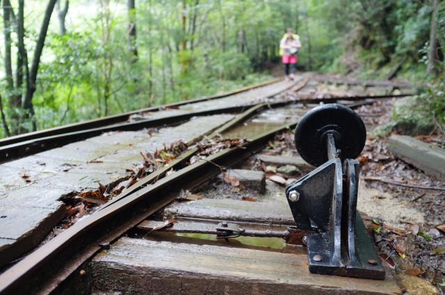 縄文杉コース森林軌道切り替えポイント