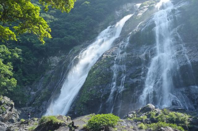 屋久島世界遺産の森あるきツアー