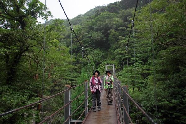 白谷雲水峡の吊橋