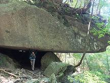 屋久島白谷雲水峡ツアー辻の岩屋もののけ姫モデル場所
