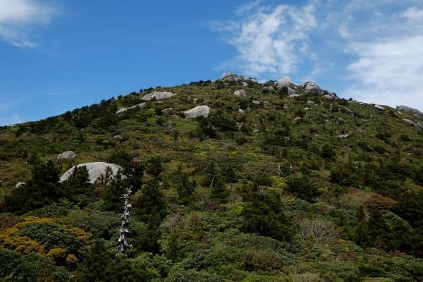 屋久島登山にて投石平