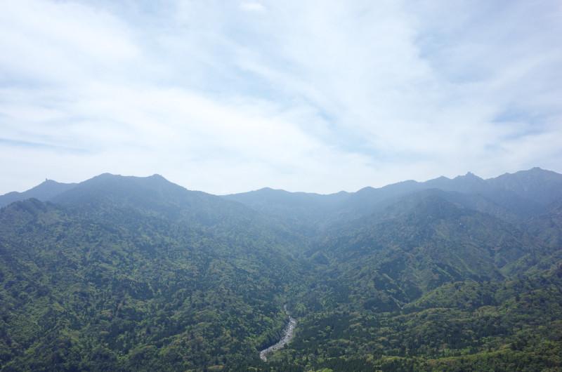 屋久島白谷雲水峡太鼓岩ツアー