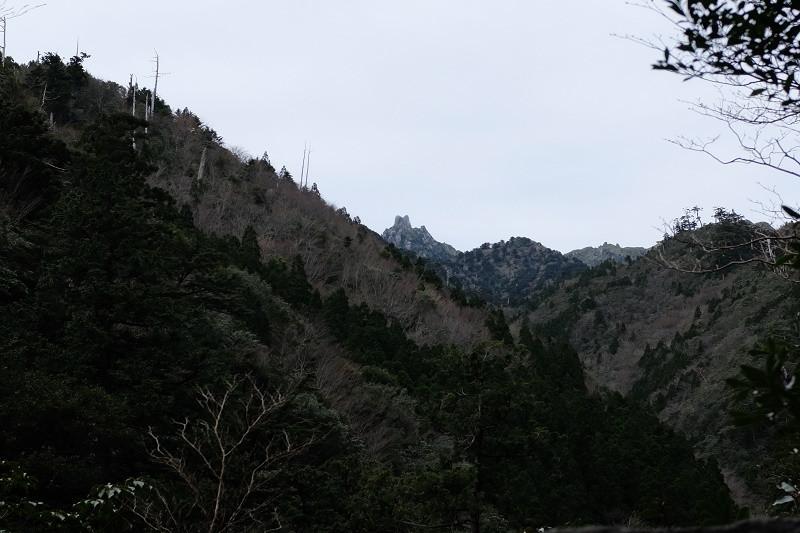 翁岳、縄文杉コーストロッコ道にて