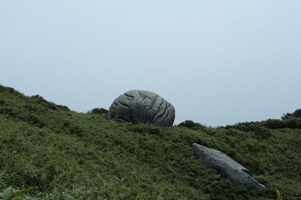 屋久島の奇岩