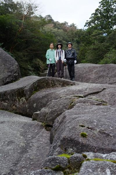 屋久島白谷雲水峡憩いの岩