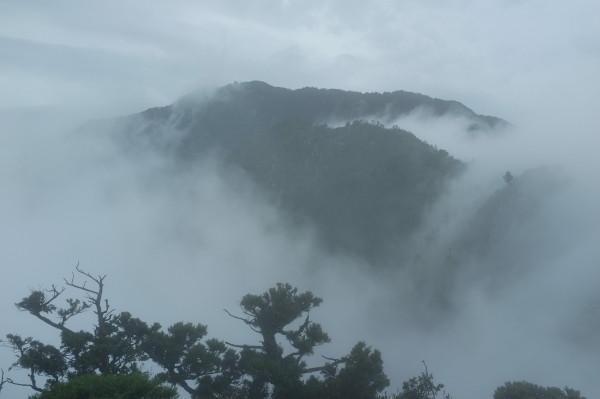 屋久島モッチョム岳登山の眺望