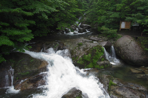 屋久島白谷雲水峡の入り口