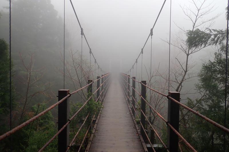 屋久島白谷雲水峡つり橋