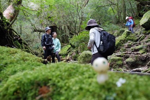 屋久島白谷雲水峡苔むす森にて記念撮影