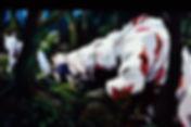 屋久島白谷雲水峡のもののけ姫モデルの場所