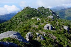 屋久島黒味岳登山ガイドツアー