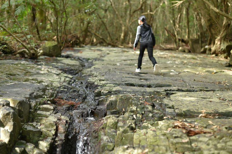 屋久島滝之川の一枚岩