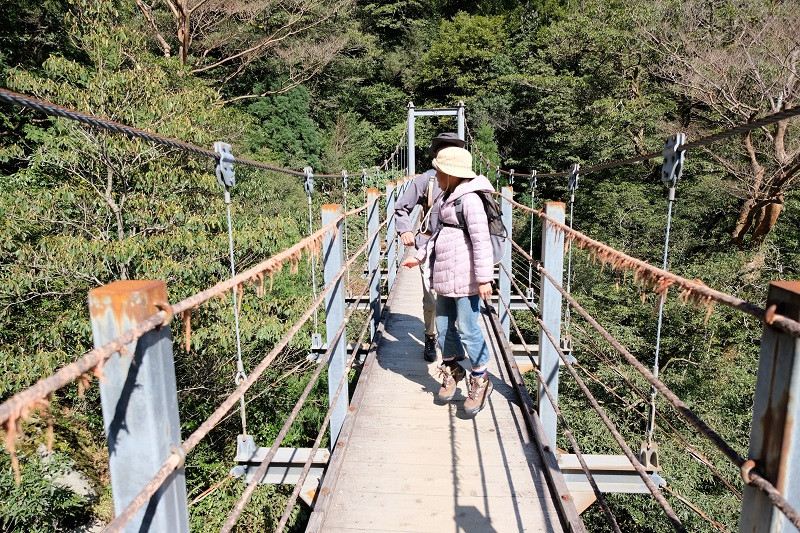 白谷雲水峡のつり橋