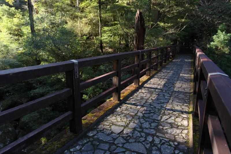 屋久島ヤクスギランドの鉄橋