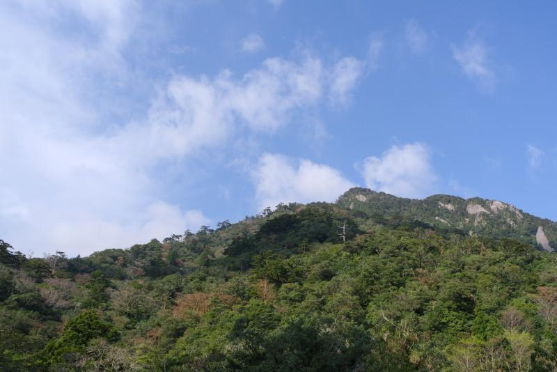 屋久島白谷雲水峡入口付近青空