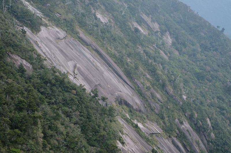 屋久島花崗岩一枚岩
