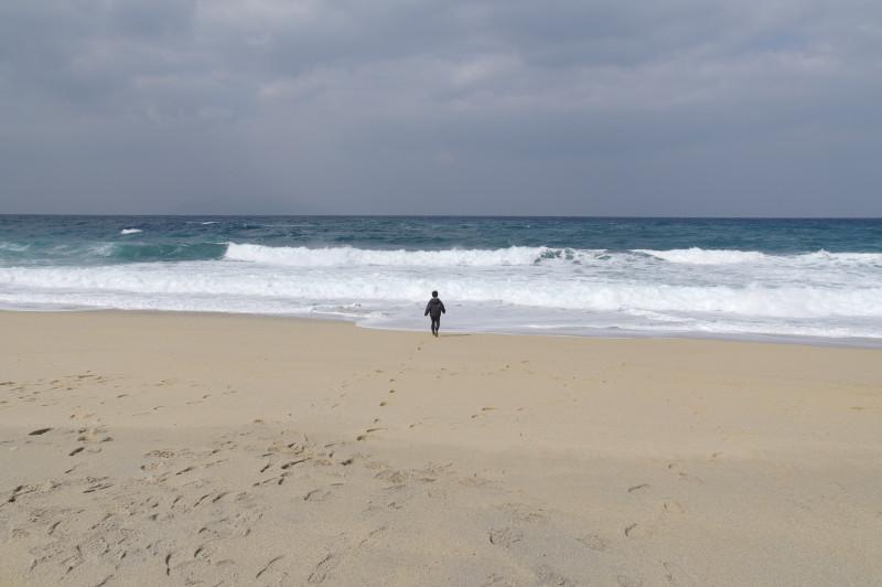 屋久島ウミガメの産卵地いなか浜