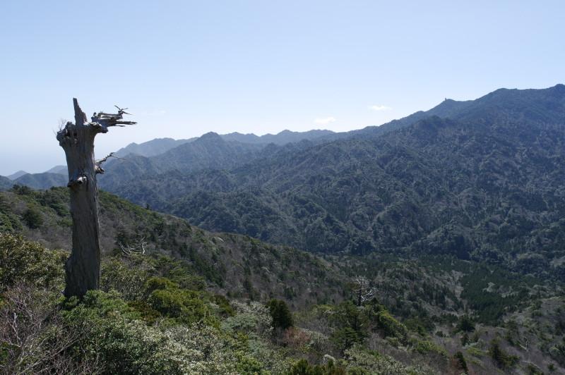 白谷雲水峡太鼓岩からの景色、太忠岳