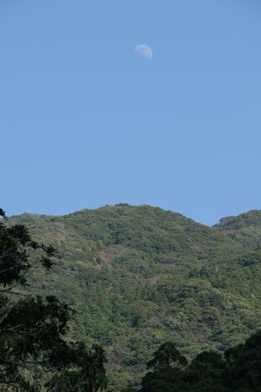 屋久島横河渓谷上弦の月