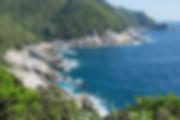 屋久島世界遺産の海岸.jpg