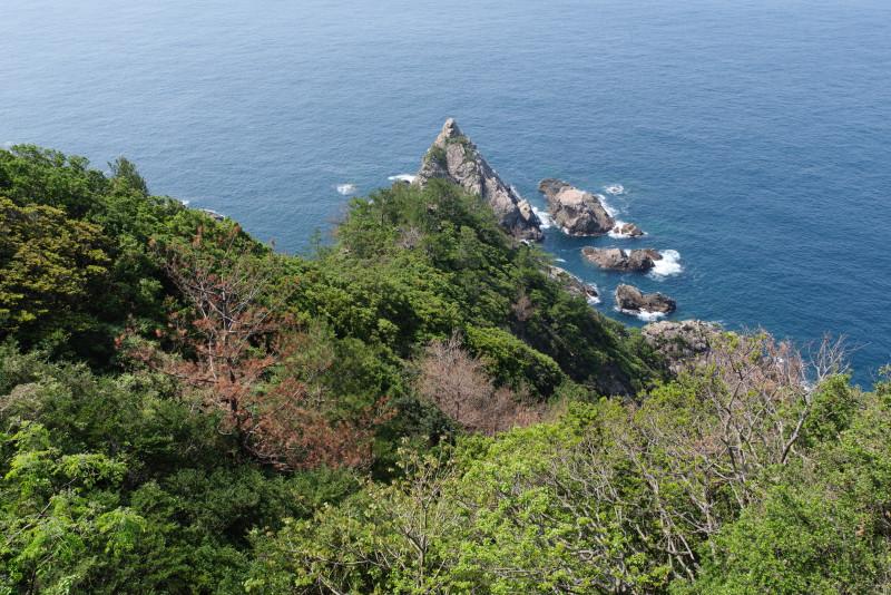 屋久島風景写真立神岩