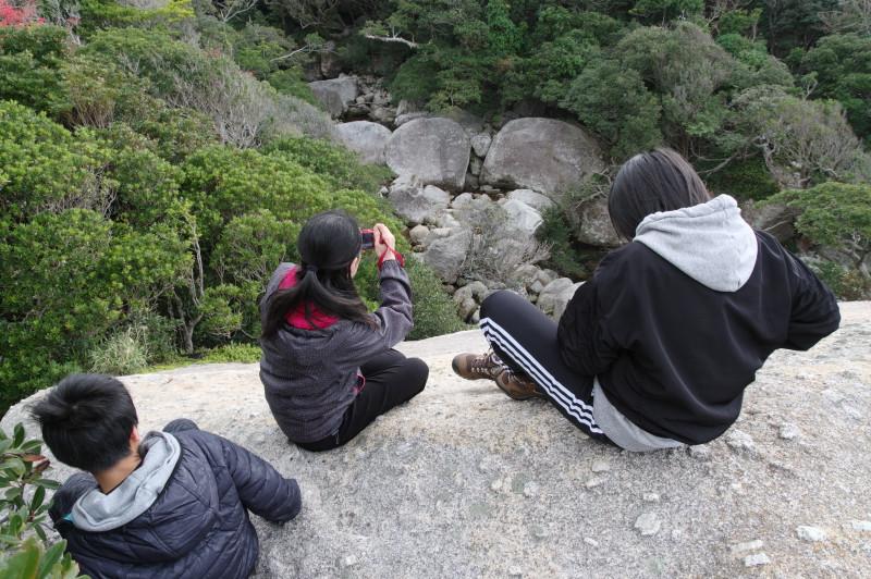屋久島世界自然遺産の大岩