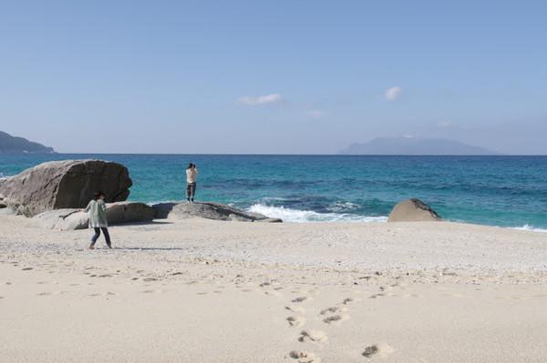 屋久島ウミガメの産卵の砂浜.jpg