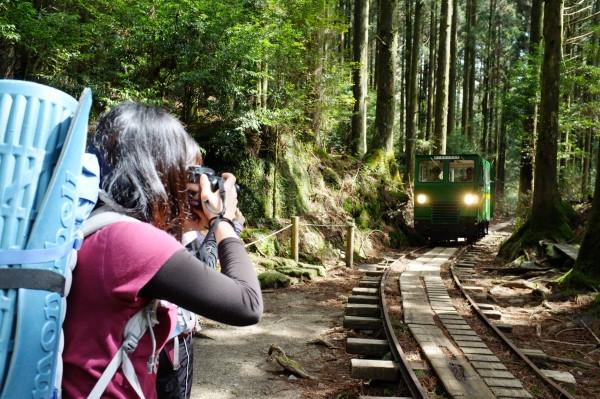 屋久島縄文杉ルートの機関車