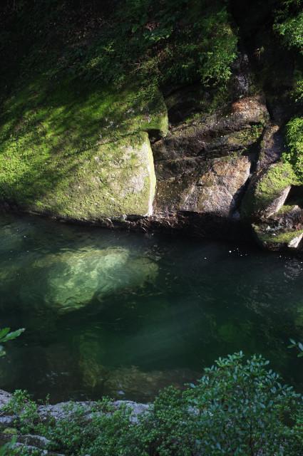 屋久島の白谷雲水峡の清流