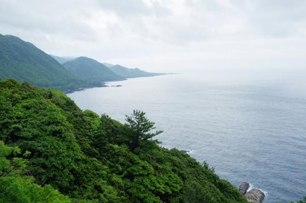 屋久島ワインディング・ロード